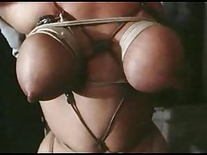 Not bondage classics 11 free theme